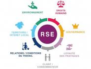 Comprendre la Responsabilité Sociétale des Entreprises (RSE)
