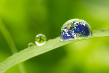 Preventie van ecologie
