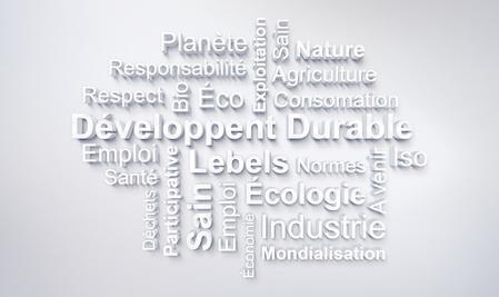 Les éléments de la responsabilité sociétale des entreprises